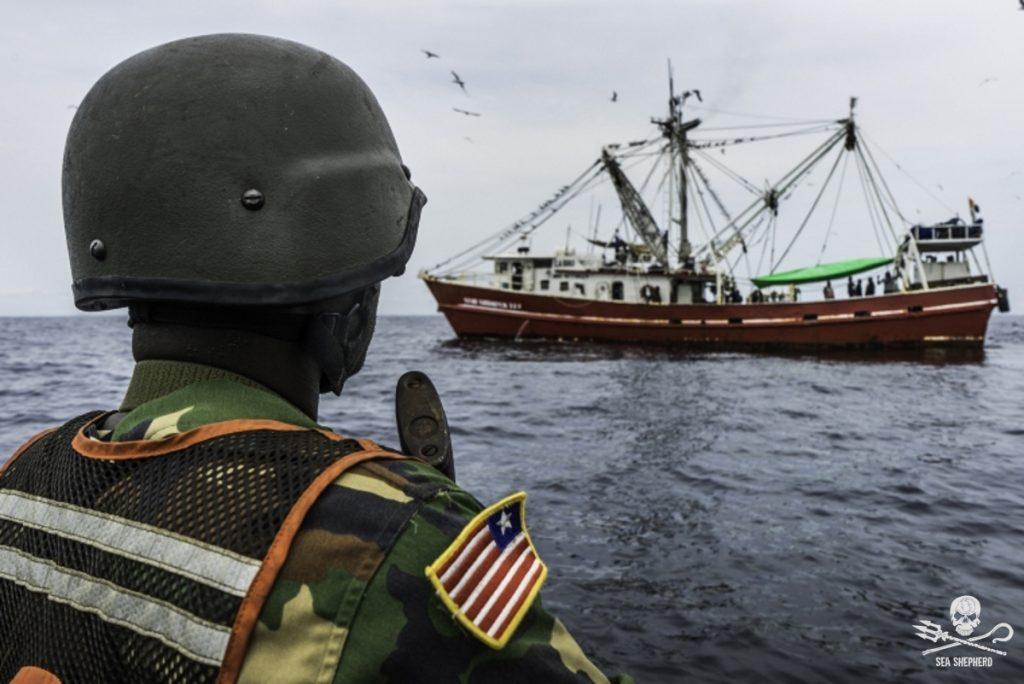 La Nigeria interviene contro il peschereccio a strascico certificato sostenibile