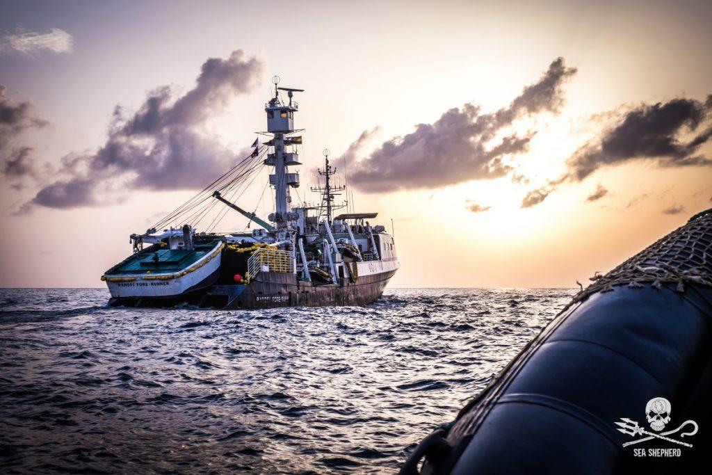 Peschereccio ghanese fermato per pesca illegale