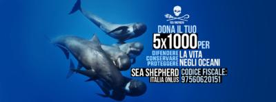 5x1000 a Sea Shepherd