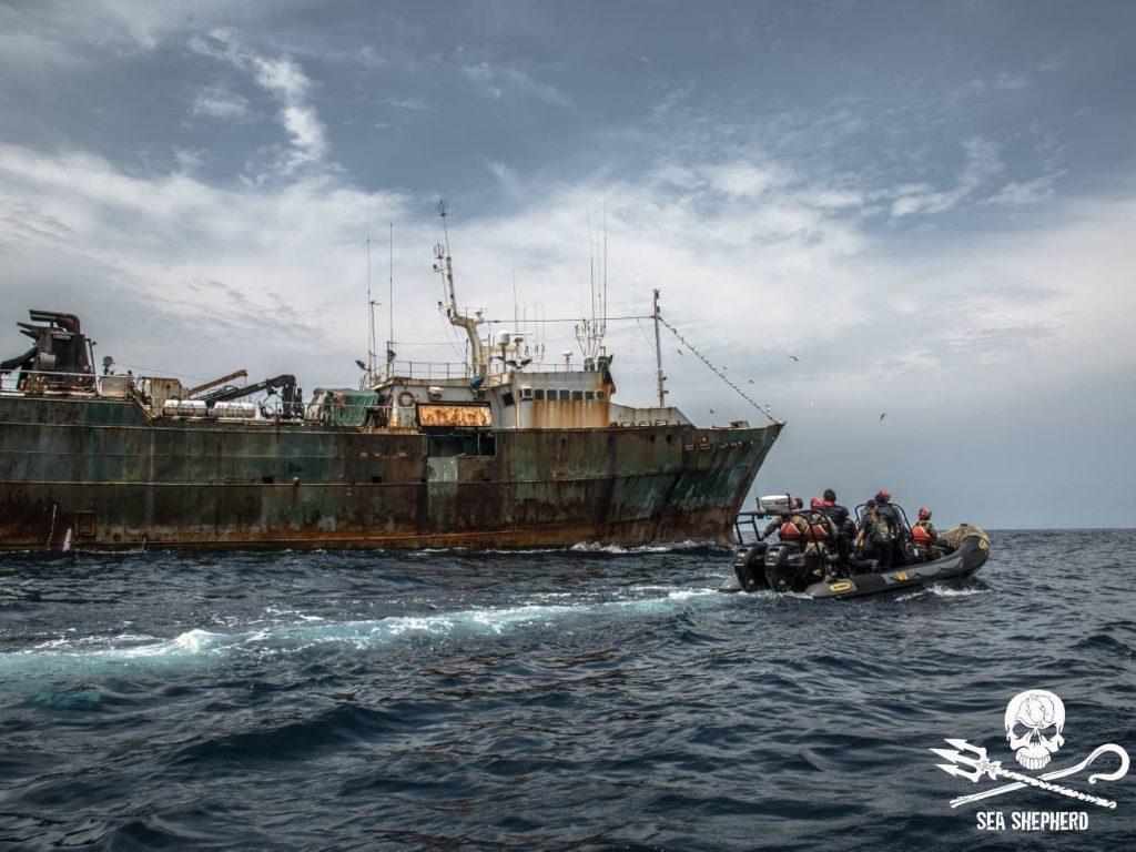 Il gommone di Sea Shepherd con a bordo la Guardia Costiera Liberiana si avvicina alla F/V Hai Lung.Foto: Yagazi Emez / Sea Shepher