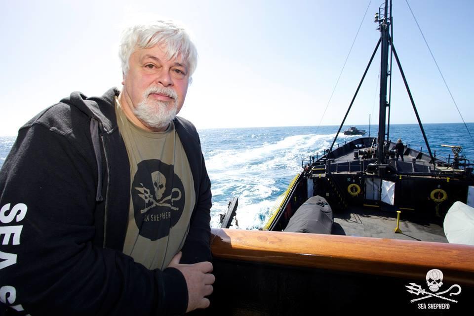 Il Capitano e fondatore Sea Shepherd, Paul Watson