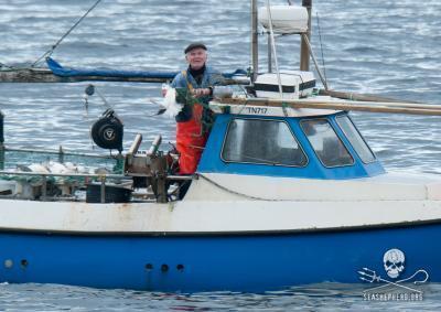caccia agli uccelli nelle Faroe
