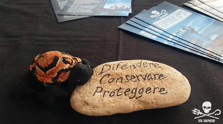 Tartaruga di pezza su un sasso con scritto difendere, conservare e proteggere